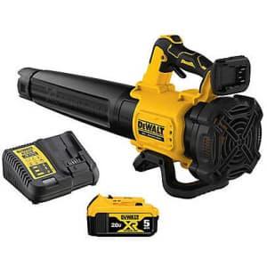 DeWalt 20V MAX XR Li-Ion Handheld Blower w/ Battery & Charger for $200 or 2 for $300