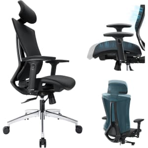 Tribesigns Ergonomic Office Chair for $150