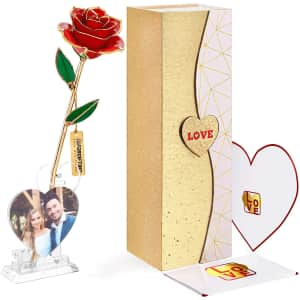 Forgifting 24K Gold Dipped Infinity Rose for $26