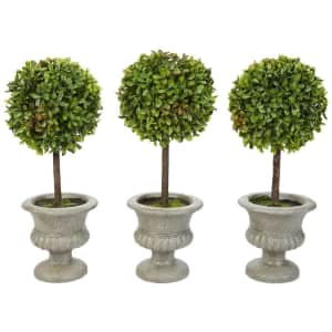 Topiary Special Buys at Home Depot: from $15