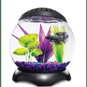 Imaginarium 1.3-Gallon Lotus Tank for $17