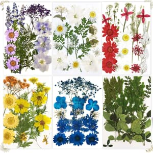 Futung 114-Piece Dried Flowers Set for $8