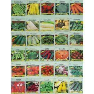Deluxe Valley Greene Heirloom Non-GMO Vegetable Garden Seeds 30-Pack for $10