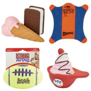 Summer Pet Toys and Gear at Chewy: Up to 60% off