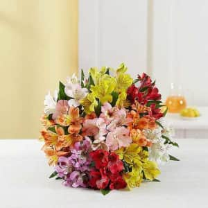 Peruvian Lilies at 1-800-Flowers: from $30