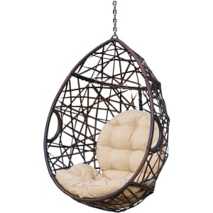 Christopher Knight Home Isaiah Wicker Tear Drop Hanging Chair for $200