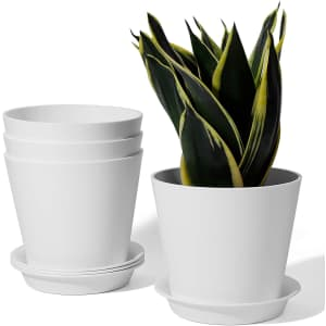 "Potey 5.5"" Succulent Plant Pot 4-Pack for $9"