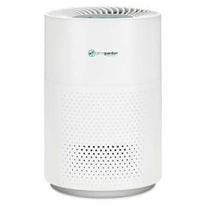 Guardian Technologie Germ Guardian True HEPA Filter Air Purifier for Home, Office, Bedrooms, Filters Allergies, Pollen, for $75