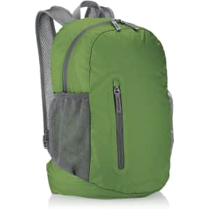 Amazon Basics Ultralight Portable Packable Day Pack for $16