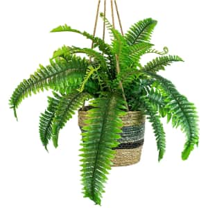 """LCG Sales 30"""" Artificial Boston Fern in Hanging Handwoven Basket for $36"""