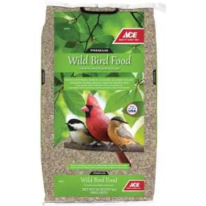 Ace Premium Wild Bird Food 20-lb. Bag for $10