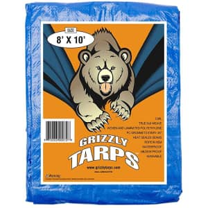 B-Air Grizzly 8x10-Ft. Tarp for $8