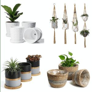 Potey Indoor & Outdoor Planter Pots at Amazon: 50% off
