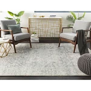 Artistic Weavers Janine Gray and Beige Updated Traditional Area Rug 2' x 3' for $31