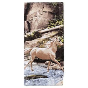 Creative Bath Products Horse Canyon Hautman Collection, Bath Towel, Multi/None for $25