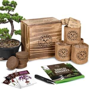 Garden Republic Bonsai Tree Seed Starter Kit for $30