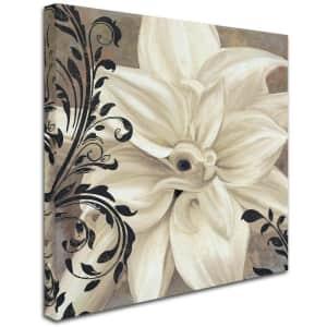 "Trademark Fine Art ""Winter White II"" 35"" x 35"" Canvas Wall Art for $82"