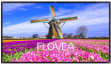 """Flovea 100"""" 16:9 Projector Screen for $30 + free shipping"""