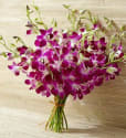 1-800-Flowers Exotic Breeze Orchids: Extra $10 off $50