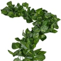 2 Artificial Ivy Garlands for $14 + free shipping