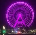 Allure Resort in Orlando, FL from $56 per night