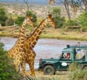 3Nt Kenya Safari Camp & Tour Package from $2,840 for 2