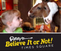 Ripley's Believe it or Not! NYC Adult Ticket for $15