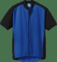 BDI Men's Road Bike Jersey for $15 + pickup at REI