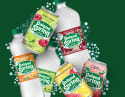 Poland Spring Sparkling Water 8-Pack for free