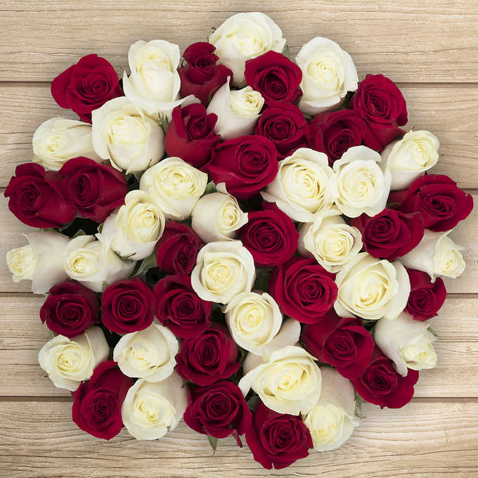 50 Valentine's Roses from $50