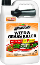 Spectracide 128-oz. Weed & Grass Killer for $5