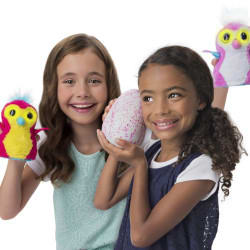 How Do Toys Like Hatchimals Become So Popular?