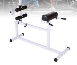 Tomshoo Hyperextension Back Workout Bench for $73