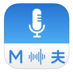 Multi Translate Voice: Say It for iPhone/iPad free