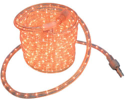 Mainstays 30-Foot Rope Light for $10