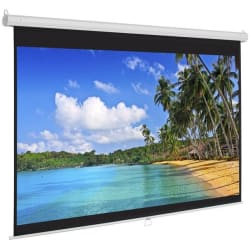 """Best Choice 119"""" Manual Projection Screen for $39"""