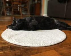 Chenille Cat Cuddle Mat for $3