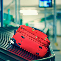 The 5 Best Credit Cards for Free Checked Bags