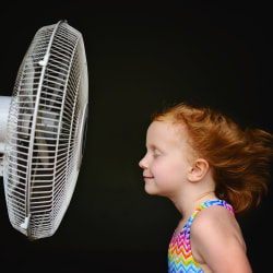 What to Look for When Buying a Fan
