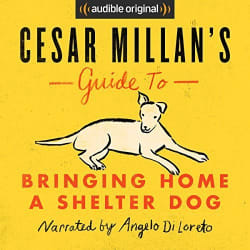 Bringing Home a Shelter Dog Guide Audiobook free