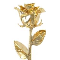 """Venus 12"""" 24K Gold Dipped Rose for $65"""