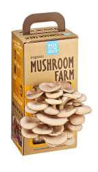 Back to the Roots Organic Mushroom Farm for $14