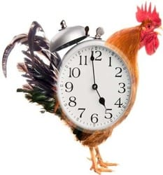 Combat Daylight Savings This Weekend With Some 'Unique' Alarm Clocks