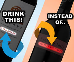 The Most Bang for Your Boozy Buck: How to Pick a Good, Inexpensive Wine