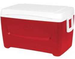 Igloo Island Breeze 48-Quart Cooler for $16