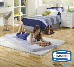 Beautysleep Siesta Twin Memory Foam Guest Bed $59