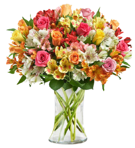 Flowers & Gifts at 1-800-Flowers: 15% off + shipping varies