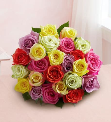 Two Dozen Assorted Roses from $30 + shipping varies