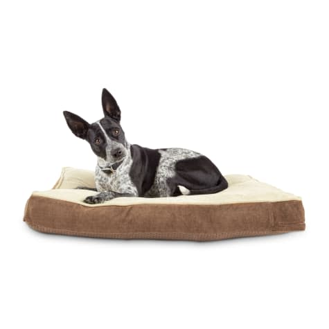 Animaze Pet Supplies at Petco: Up to 78% off + free shipping w/ $35