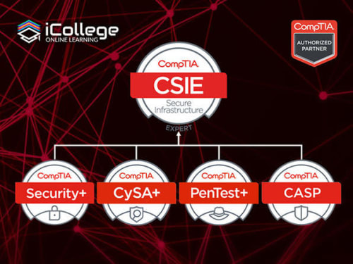 The CompTIA Security Infrastructure Expert Bundle for $21